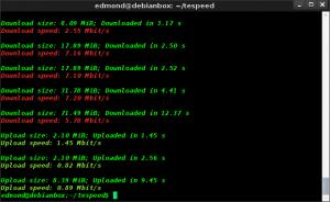 Speedtest da teminale in Linux con Testspeed