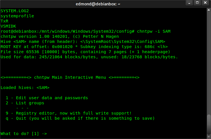 Come cancellare password login Windows da Linux